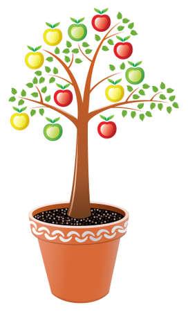 vector apple tree in pot Vector