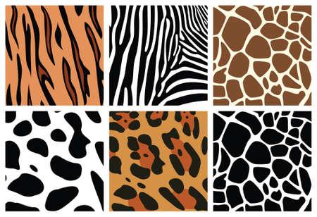 illustration zoo: texture di pelle animale vettore della tigre, zebre, giraffe, leopardo e mucca Vettoriali