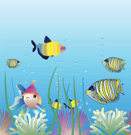 aquarium and fishes Stock Vector - 6780913