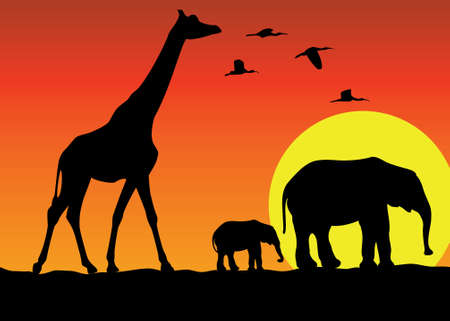 giraffe and elephants in africa Vector