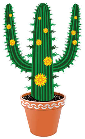 pot cactus with flowers Stock Vector - 6870896