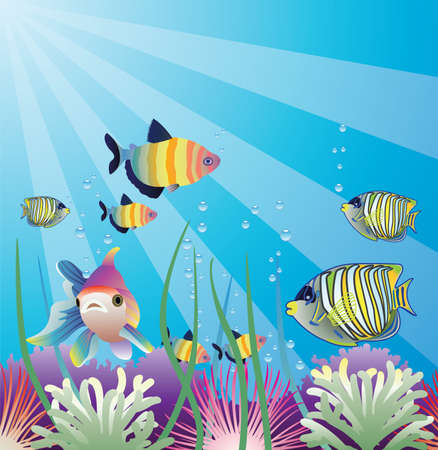 underwater of tropical fishes Stock Vector - 6923233
