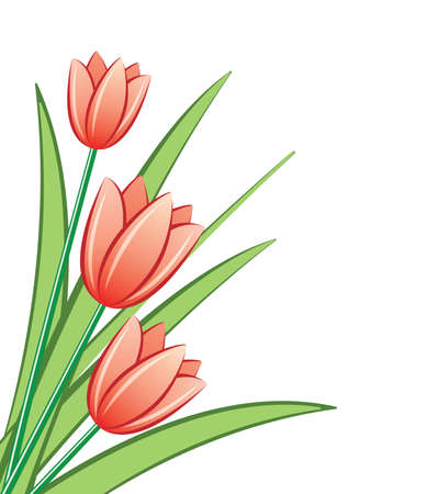 bunch of red tulips Vector