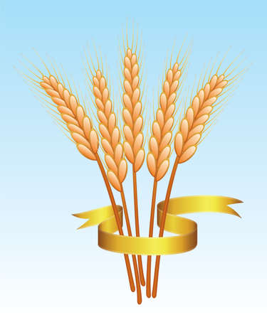 bunch of wheat ears and golden ribbon Stock Vector - 7220753