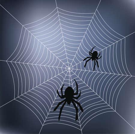 araignées et web  Vecteurs