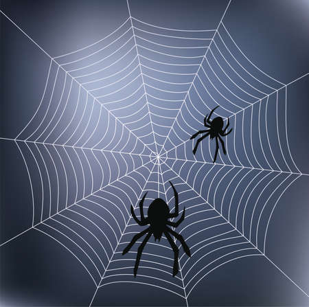 spider web background: spiders and web Illustration