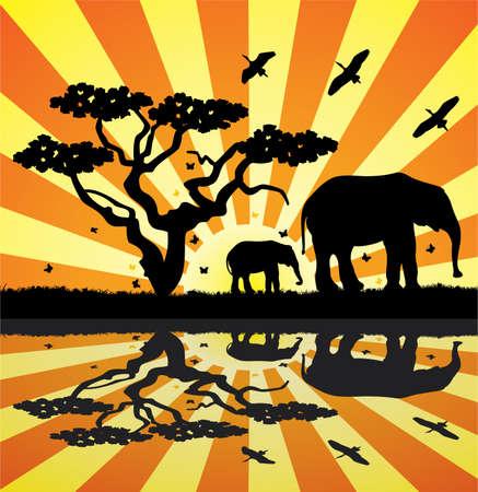 elephants, birds and butterflies in africa Vector
