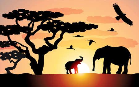 elephants in africa Vector