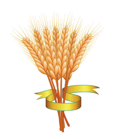 bunch of wheat ears and golden ribbon Stock Vector - 7334007