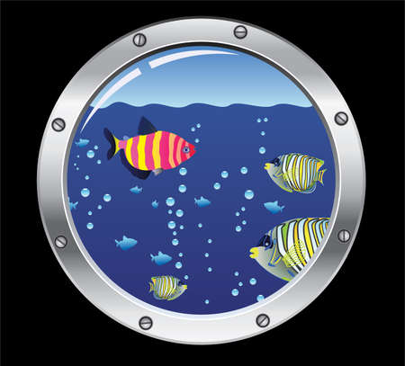 porthole and colorful fishes Stock Vector - 7334028
