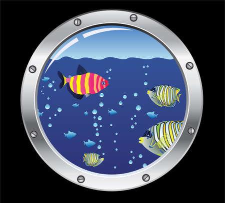 porthole: porthole and colorful fishes