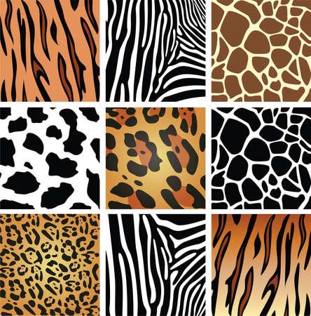 animal skin textures of tiger, zebra, giraffe, leopard and cow Stock Vector - 7393365