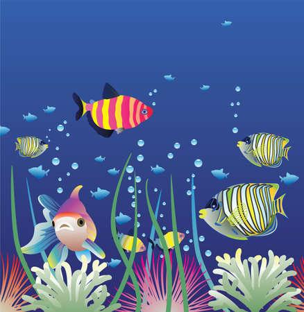 algas marinas: Acuario de vector y coloridos peces