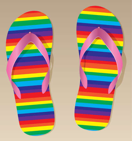 slippers: pair of flip flops on the sand