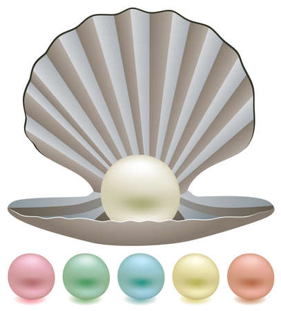 pearl shell: set of pearls and a shell