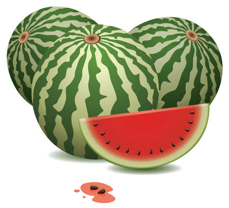 watermelons and a slice Vector