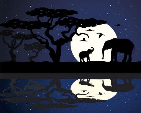 large group of animals: elefante de la madre y el beb� elefante en �frica cerca del agua durante la noche  Vectores