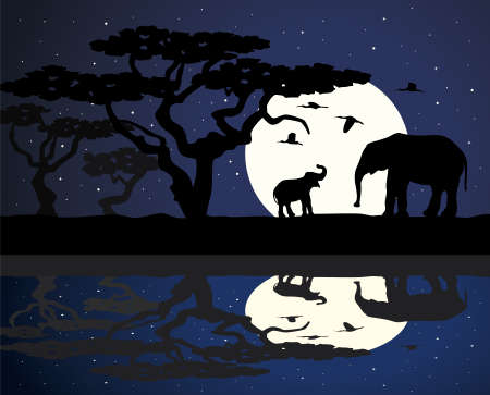 large group of animals: mother elephant and baby elephant in africa near water at night