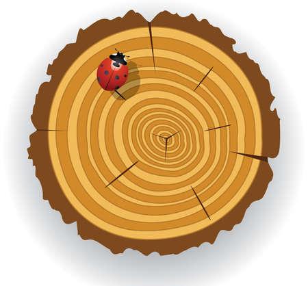 arboles de caricatura: predise�ada de corte madera  Vectores