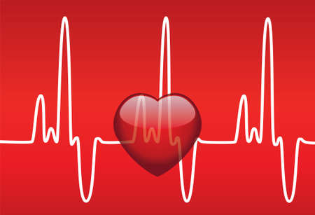 medical illustration of heart and heartbeat Stock Vector - 8145045