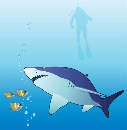 underwater vector of a shark, tropical fishes and scuba diver Vector