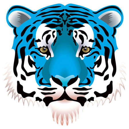 tigre blanc: illustration vectorielle de t�te de tigre bleu