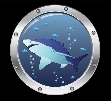 vector porthole and a shark Vector