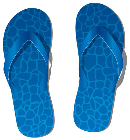 flip flops:   pair of blue flip flops