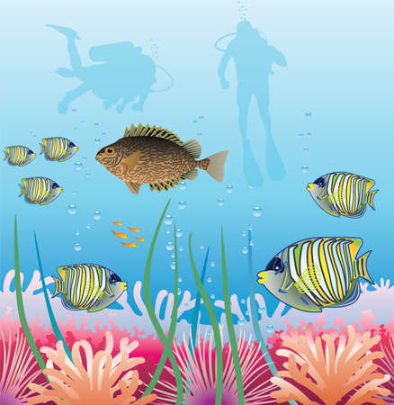 underwater of tropical fishes and scuba divers Vector