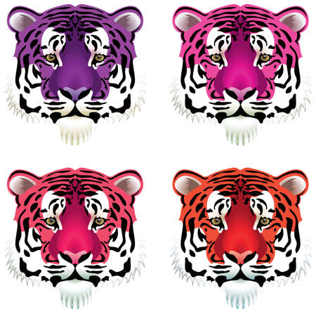 grey cat: vector set of colorful tiger heads