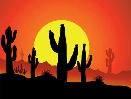 cactus desert: vector cactus in de woestijn bij zonsopgang of zonsondergang Stock Illustratie
