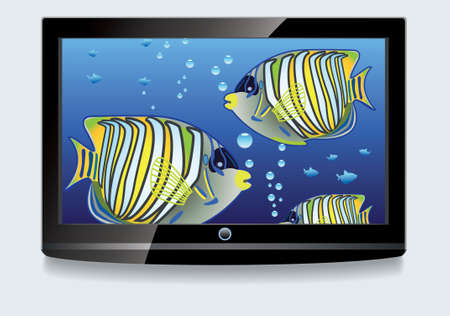 LCD screen with colorful fishes Stock Vector - 8977831