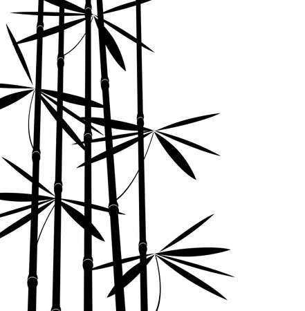 illustration of black and white bamboo Vector