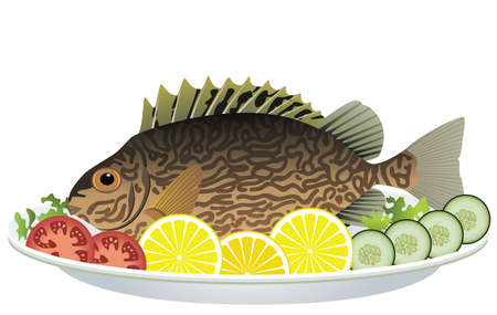 cooked fish and raw vegetables on a plate Stock Vector - 9206932