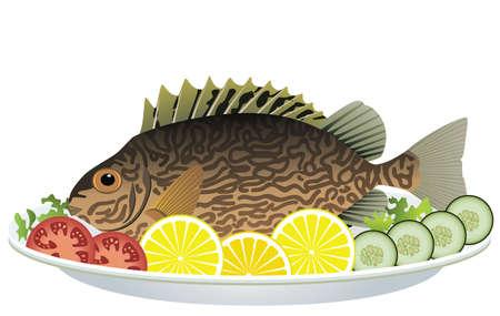 pesce cotto: pesce cucinato e verdure crude su un piatto Vettoriali