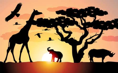 giraffe, rhinoceros and elephant in africa Vector