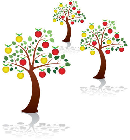 orchard fruit: vector group of apple trees in a park or orchard
