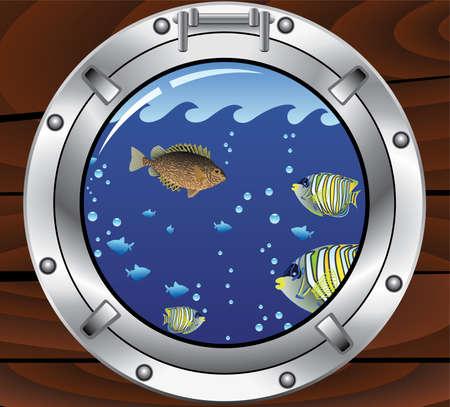 ventana ojo de buey: Portilla y coloridos peces tropicales de vectores Vectores