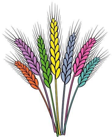 vector colorful wheat ears Stock Vector - 9614297