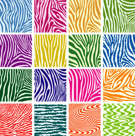 zebra: vector set of colorful skin textures of zebra