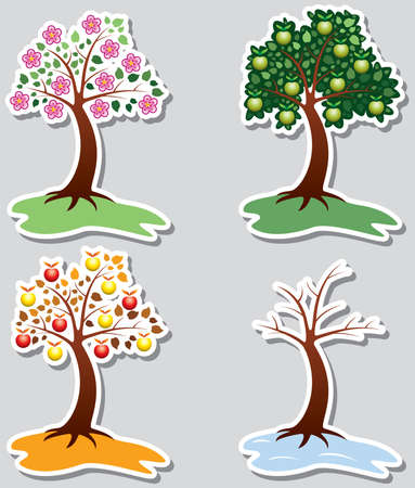set of apple trees in four seasons Vector