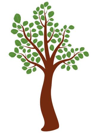 albero di olmo vettoriale Vettoriali