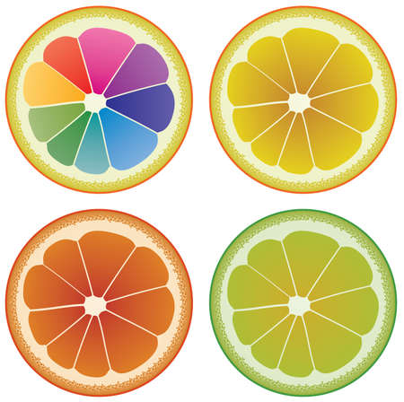 different shapes: vector set of colorful citrus slices  Illustration