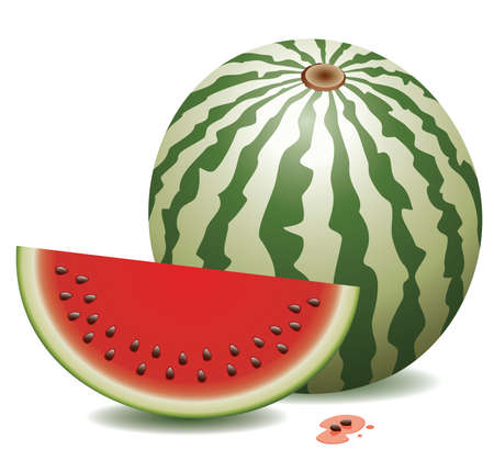 water melon: watermelon and a slice