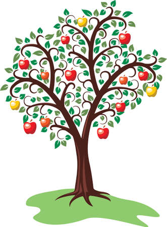 design of apple tree with fruits Vector