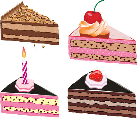 cake slices with fruits, chocolate and candle