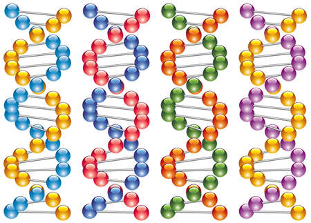 set of colorful dna strands Vector