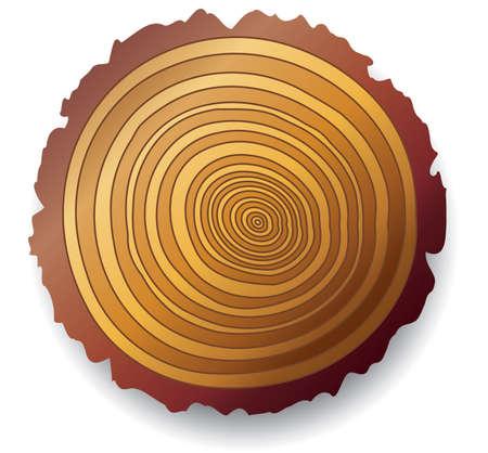 cut logs: Corte transversal de madera de vector de un �rbol