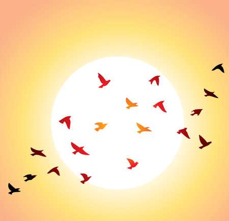 bandada pajaros: Vector bandada de aves y sol brillante, sobrevolando