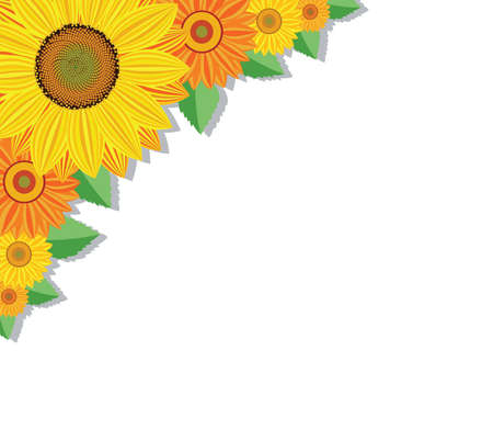 orange blossom: vector background with sunflowers and leaves